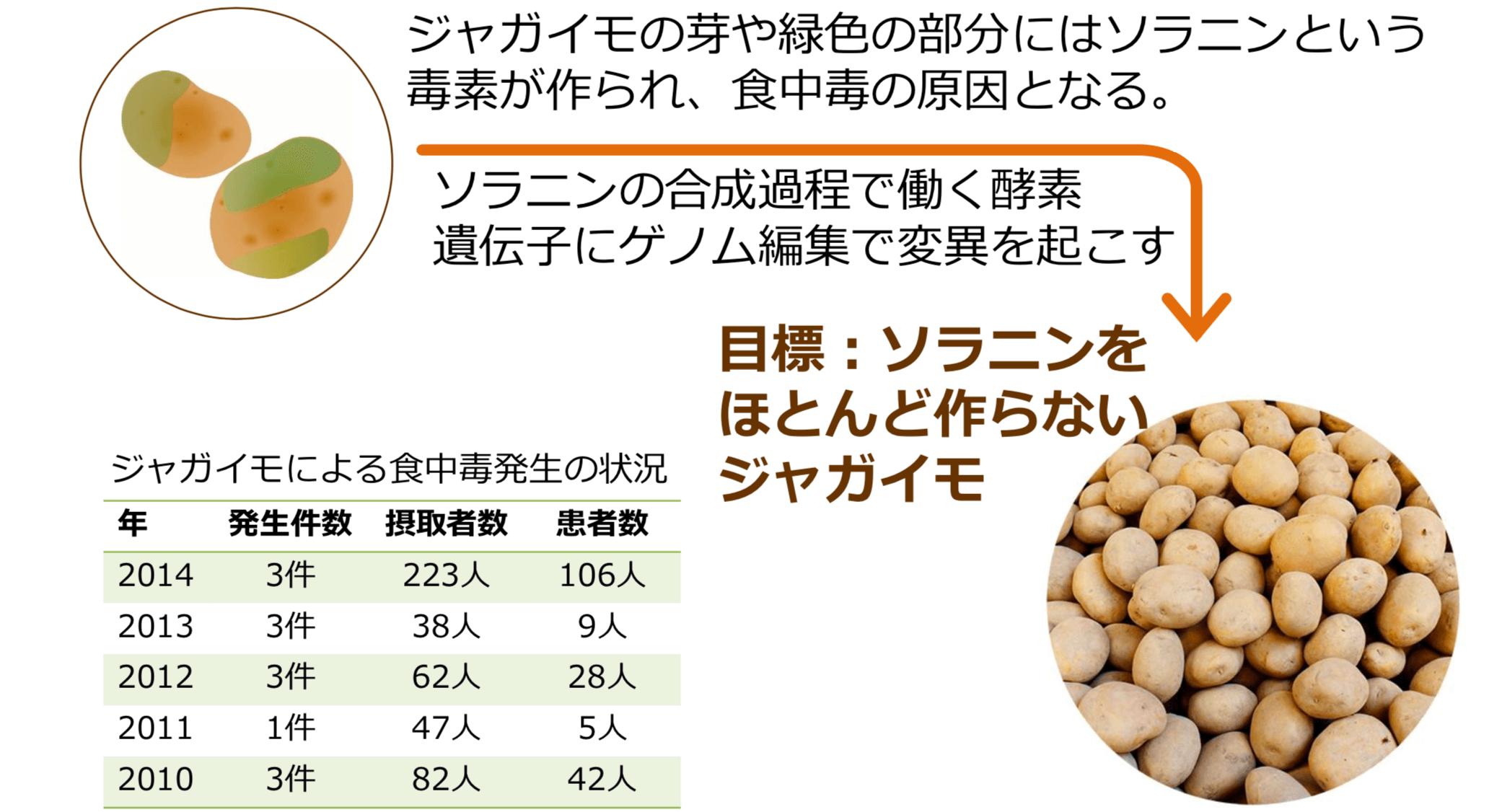 食中毒リスク低減ジャガイモ(食のリスク低減)
